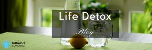 Life Detox Blog