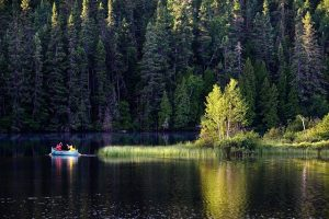 Conto: a canoa no meio da floresta