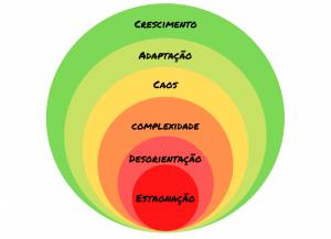 6 ciclos de crescimento